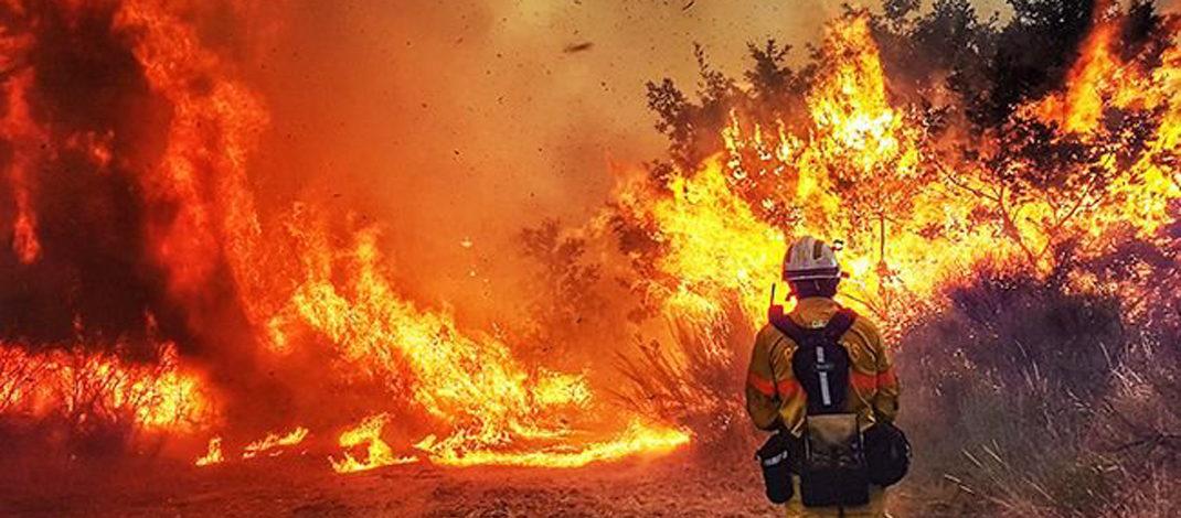 Спалювання сухих рослинних залишків – небезпека для життя