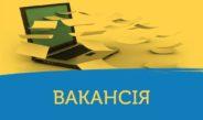 Оголошення конкурсу про заміщення вакантної посади спеціаліста 1 категорії відділу соціального захисту населення виконавчого органу Немішаївської селищної ради