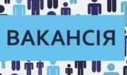 Оголошення конкурсу на заміщення вакантної посади спеціаліста 1 категорії Служби у справах дітей Немішаївської селищної ради (з питань бухгалтерського обліку та звітності)